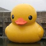 Florentijn Hofman Rubber Duck 2007